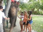 Chalwe Diallo in Thailand